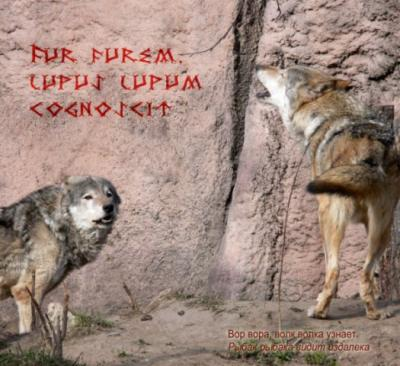 prikoly_01